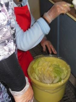 白菜を樽に漬け込む