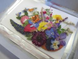 押し花で額づくり(作製過程)
