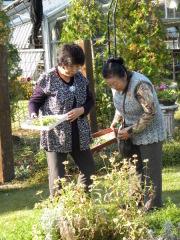 ふかや緑の王国内でお花摘み