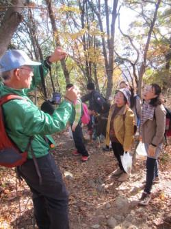 鐘撞堂山の樹木の説明を受ける参加者