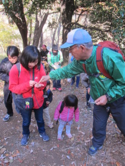 木の実の説明を受ける参加者