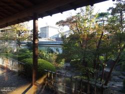 掃部寮から見える景色(日本庭園と紅葉した木々)